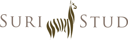 Suri Stud
