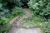 Cottesmore Gardens, Kensington London W8 thumbnail 12